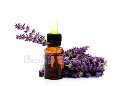 bibit parfum laundry lavender essential oil